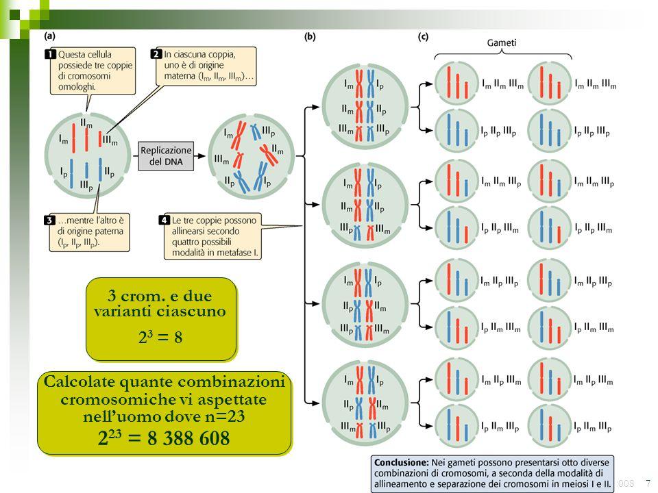 Luca Gianfranceschi - 2008 7 2 3 = 8 3 crom. e due varianti ciascuno Calcolate quante combinazioni cromosomiche vi aspettate nelluomo dove n=23 2 23 =