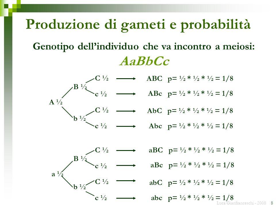 Luca Gianfranceschi - 2008 8 Produzione di gameti e probabilità Genotipo dellindividuo che va incontro a meiosi: AaBbCc A ½ a ½ B ½ b ½ C ½ c ½ C ½ c