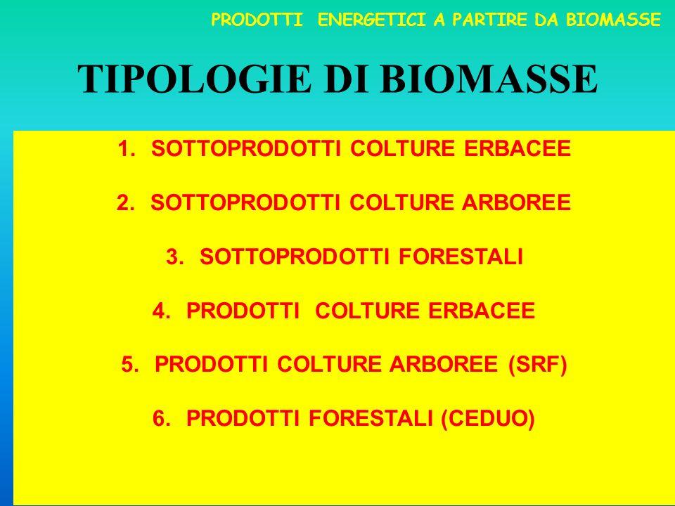 TIPOLOGIE DI BIOMASSE 1.SOTTOPRODOTTI COLTURE ERBACEE 2.SOTTOPRODOTTI COLTURE ARBOREE 3.SOTTOPRODOTTI FORESTALI 4.PRODOTTI COLTURE ERBACEE 5.PRODOTTI