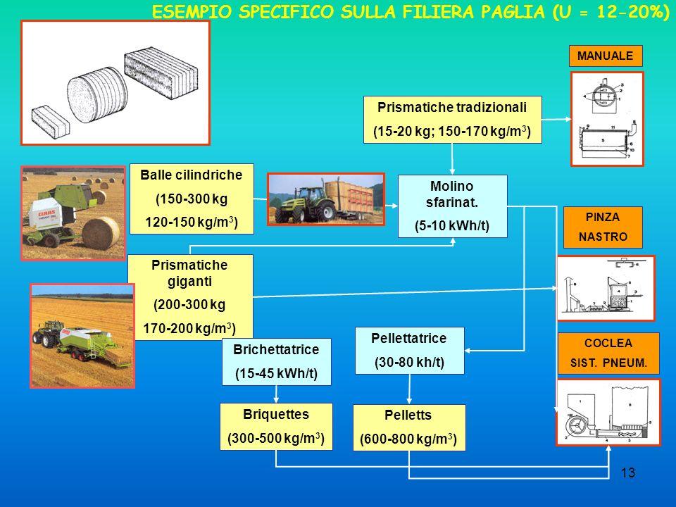 13 ESEMPIO SPECIFICO SULLA FILIERA PAGLIA (U = 12-20%) Prismatiche tradizionali (15-20 kg; 150-170 kg/m 3 ) Balle cilindriche (150-300 kg 120-150 kg/m
