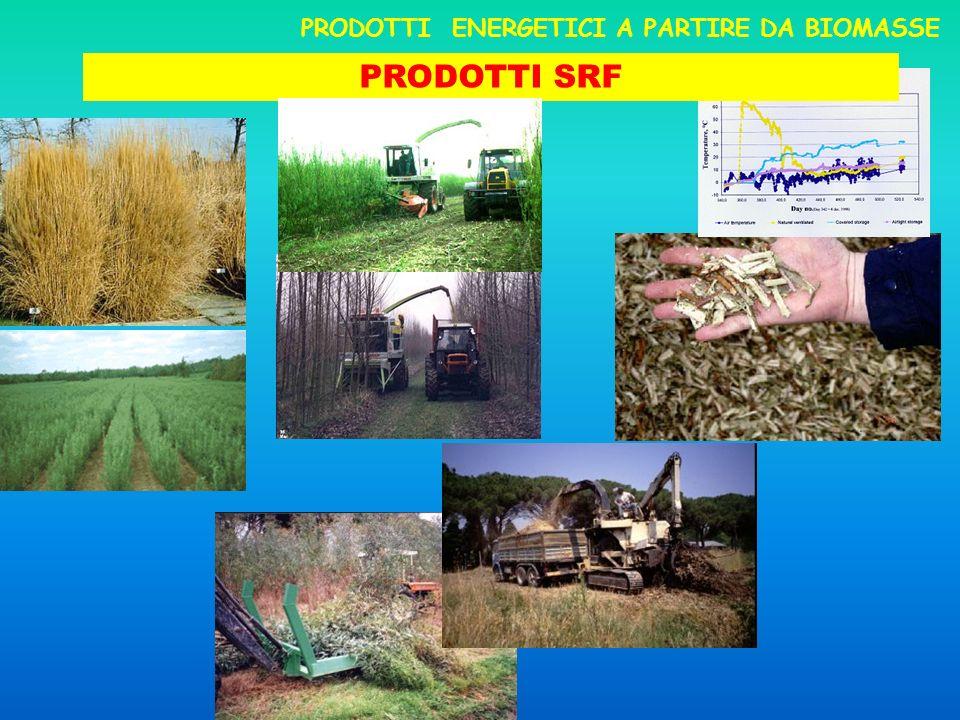 PRODOTTI SRF PRODOTTI ENERGETICI A PARTIRE DA BIOMASSE
