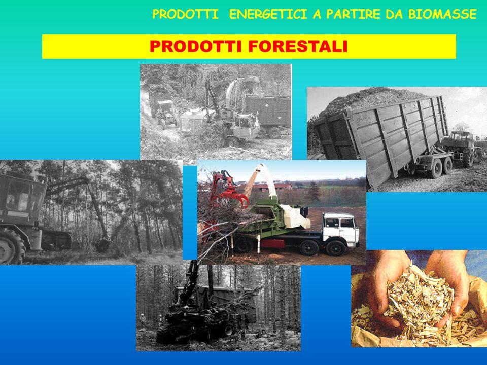 PRODOTTI FORESTALI PRODOTTI ENERGETICI A PARTIRE DA BIOMASSE