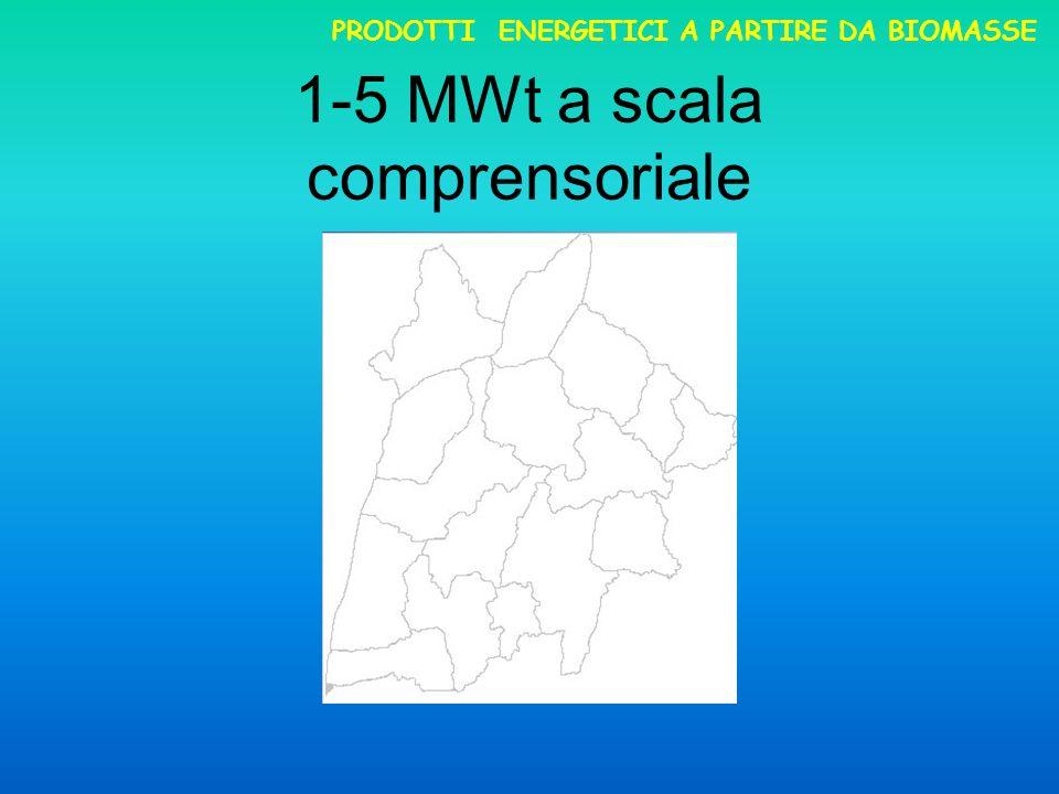 1-5 MWt a scala comprensoriale PRODOTTI ENERGETICI A PARTIRE DA BIOMASSE