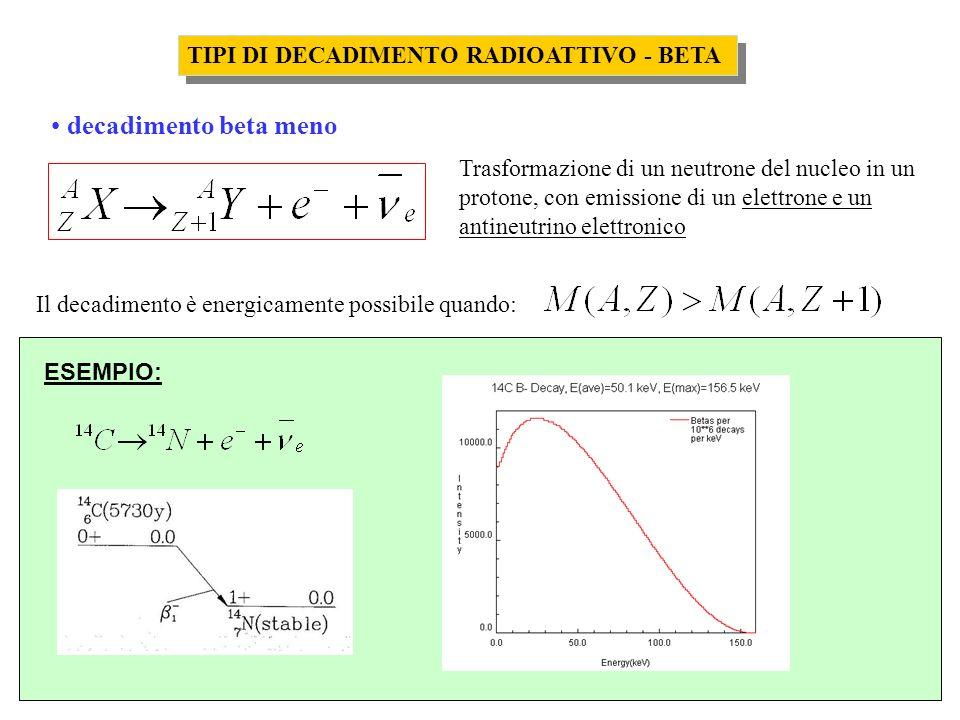 TIPI DI DECADIMENTO RADIOATTIVO - BETA decadimento beta meno Trasformazione di un neutrone del nucleo in un protone, con emissione di un elettrone e u
