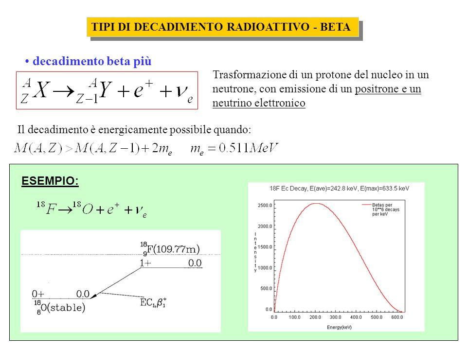 TIPI DI DECADIMENTO RADIOATTIVO - BETA decadimento beta più Trasformazione di un protone del nucleo in un neutrone, con emissione di un positrone e un