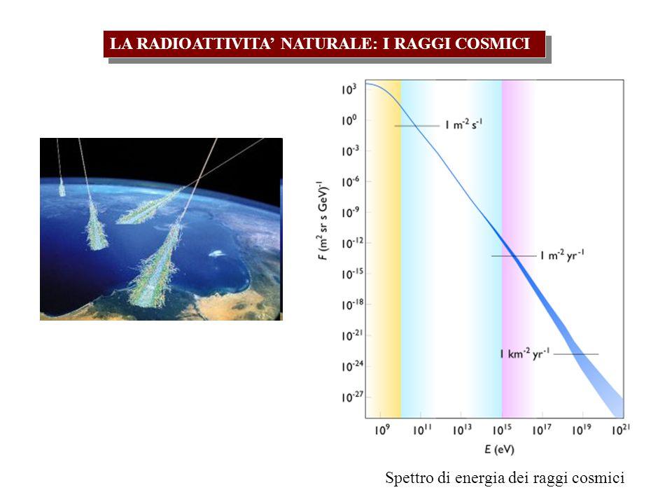 LA RADIOATTIVITA NATURALE: I RAGGI COSMICI Spettro di energia dei raggi cosmici