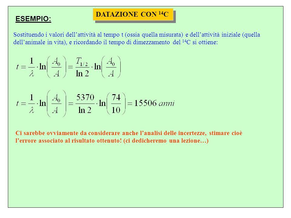 DATAZIONE CON 14 C Sostituendo i valori dellattività al tempo t (ossia quella misurata) e dellattività iniziale (quella dellanimale in vita), e ricord