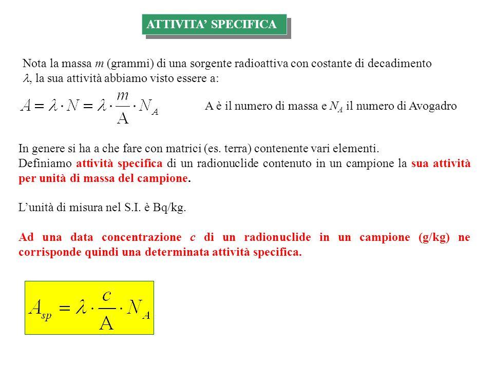 ATTIVITA SPECIFICA Nota la massa m (grammi) di una sorgente radioattiva con costante di decadimento, la sua attività abbiamo visto essere a: A è il nu