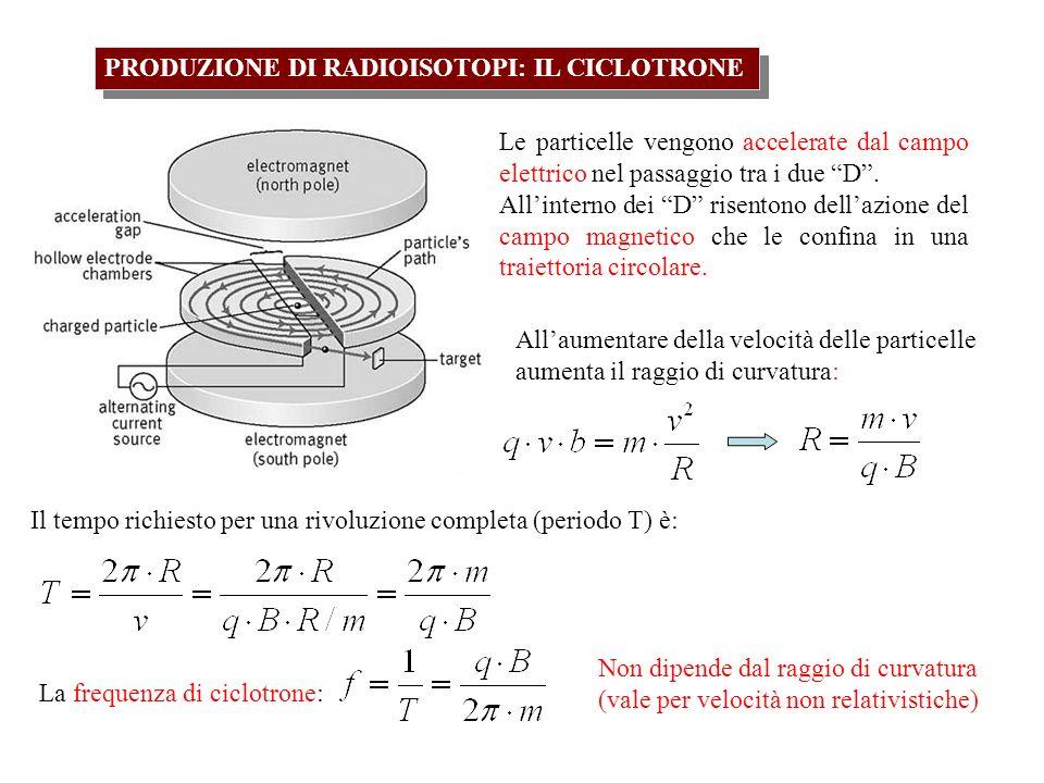 PRODUZIONE DI RADIOISOTOPI: IL CICLOTRONE Le particelle vengono accelerate dal campo elettrico nel passaggio tra i due D. Allinterno dei D risentono d