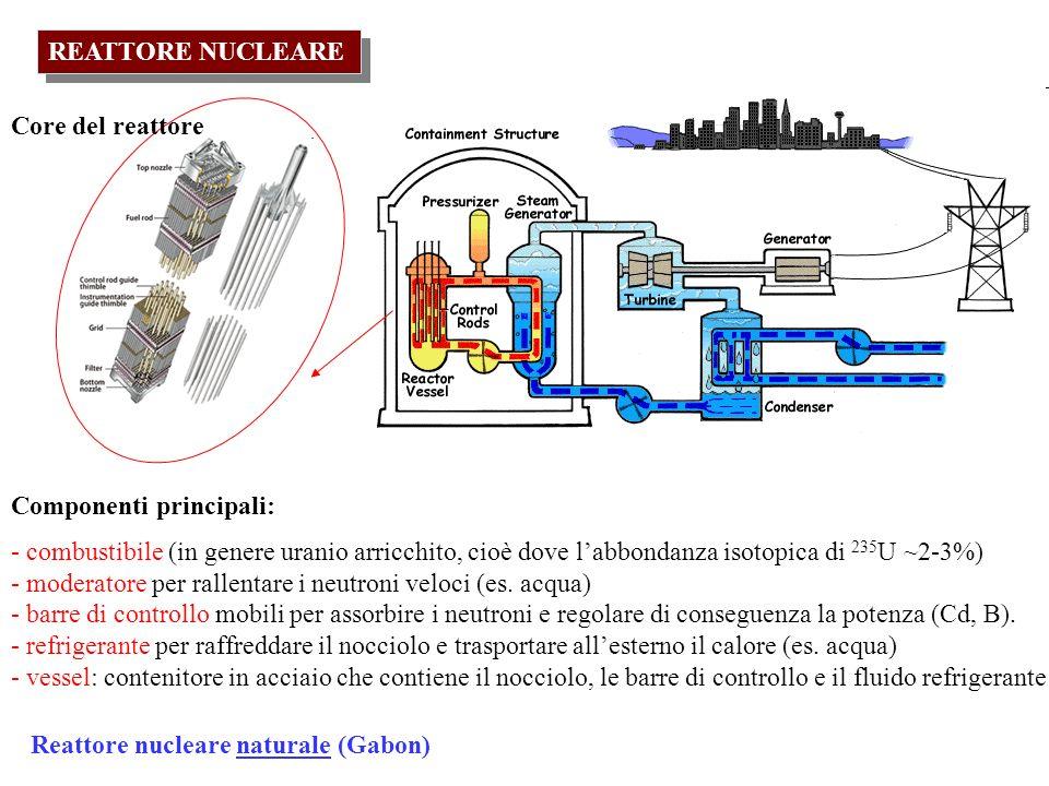 REATTORE NUCLEARE Componenti principali: - combustibile (in genere uranio arricchito, cioè dove labbondanza isotopica di 235 U ~2-3%) - moderatore per