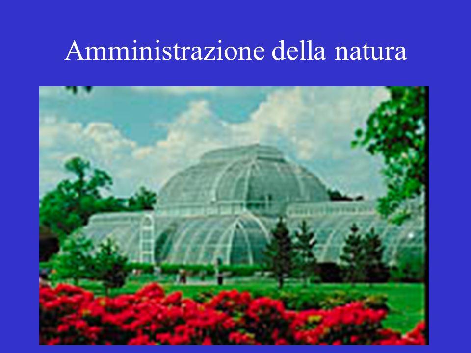 Amministrazione della natura