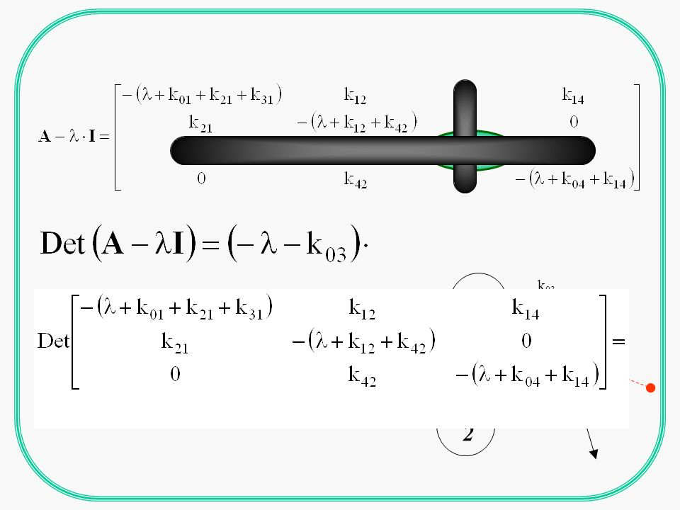 METODO DELLA MATRICE DELLA FUNZIONE DI TRASFERIMENTO mxr termini n = numero compartimenii r = numero input m = numero output p = numero parametri