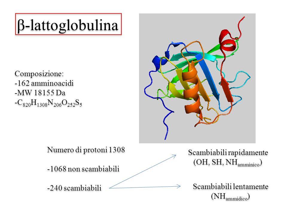 β-lattoglobulina Composizione: -162 amminoacidi -MW 18155 Da -C 820 H 1308 N 206 O 252 S 5 Composizione: -162 amminoacidi -MW 18155 Da -C 820 H 1308 N 206 O 252 S 5 Numero di protoni 1308 -1068 non scambiabili -240 scambiabili Numero di protoni 1308 -1068 non scambiabili -240 scambiabili Scambiabili rapidamente (OH, SH, NH amminico ) Scambiabili rapidamente (OH, SH, NH amminico ) Scambiabili lentamente (NH ammidico ) Scambiabili lentamente (NH ammidico )