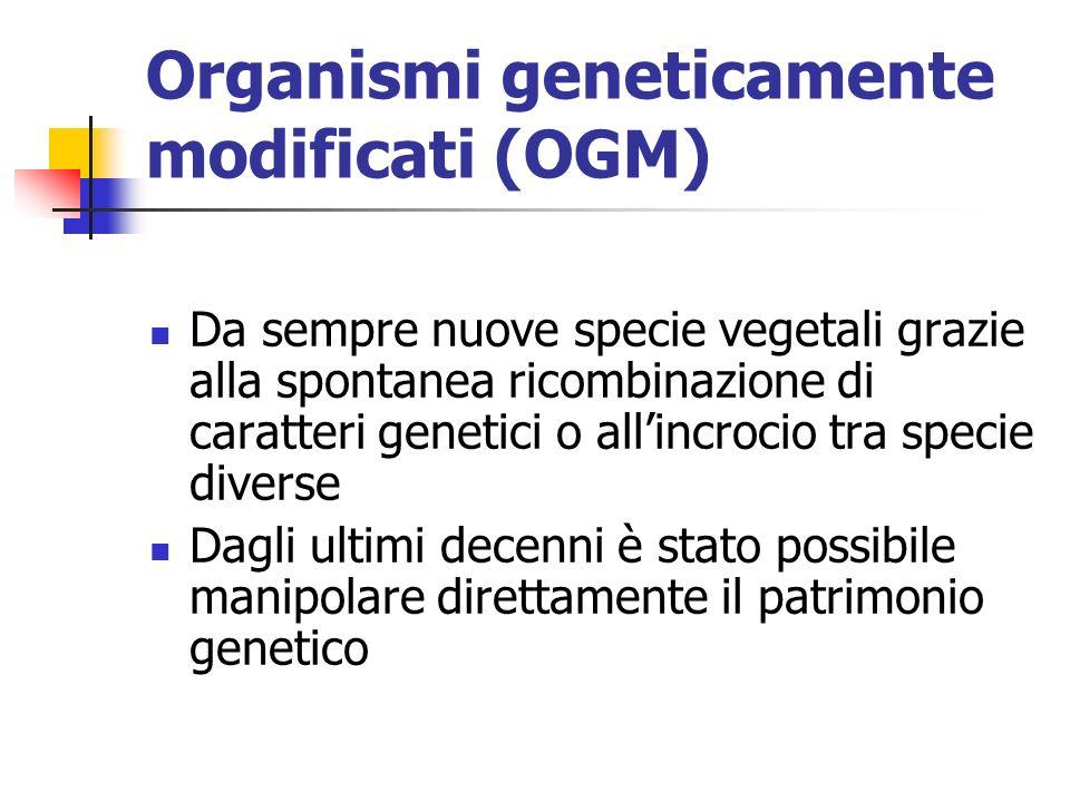 Organismi geneticamente modificati (OGM) Da sempre nuove specie vegetali grazie alla spontanea ricombinazione di caratteri genetici o allincrocio tra specie diverse Dagli ultimi decenni è stato possibile manipolare direttamente il patrimonio genetico