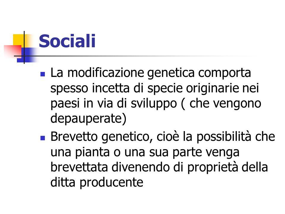 Sociali La modificazione genetica comporta spesso incetta di specie originarie nei paesi in via di sviluppo ( che vengono depauperate) Brevetto genetico, cioè la possibilità che una pianta o una sua parte venga brevettata divenendo di proprietà della ditta producente