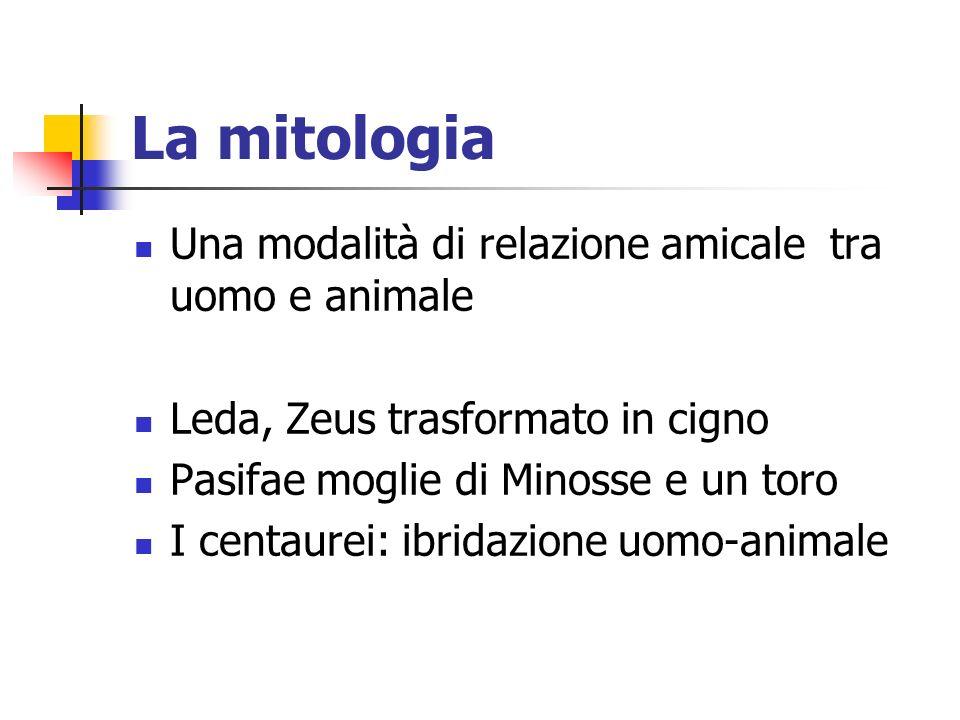 La mitologia Una modalità di relazione amicale tra uomo e animale Leda, Zeus trasformato in cigno Pasifae moglie di Minosse e un toro I centaurei: ibridazione uomo-animale