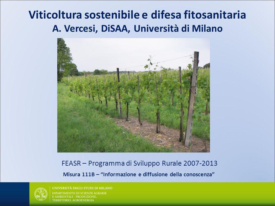 Viticoltura sostenibile e difesa fitosanitaria A. Vercesi, DiSAA, Università di Milano FEASR – Programma di Sviluppo Rurale 2007-2013 Misura 111B – In