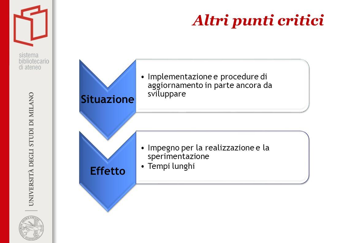 Altri punti critici Situazione Implementazione e procedure di aggiornamento in parte ancora da sviluppare Effetto Impegno per la realizzazione e la sp