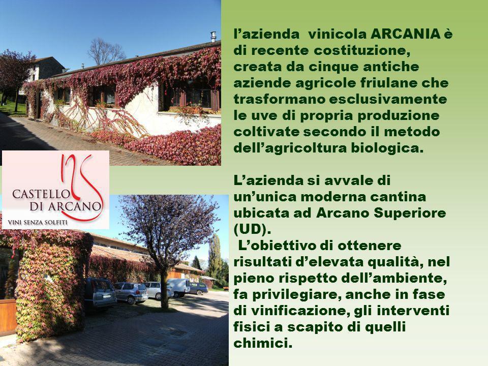 lazienda vinicola ARCANIA è di recente costituzione, creata da cinque antiche aziende agricole friulane che trasformano esclusivamente le uve di propria produzione coltivate secondo il metodo dellagricoltura biologica.