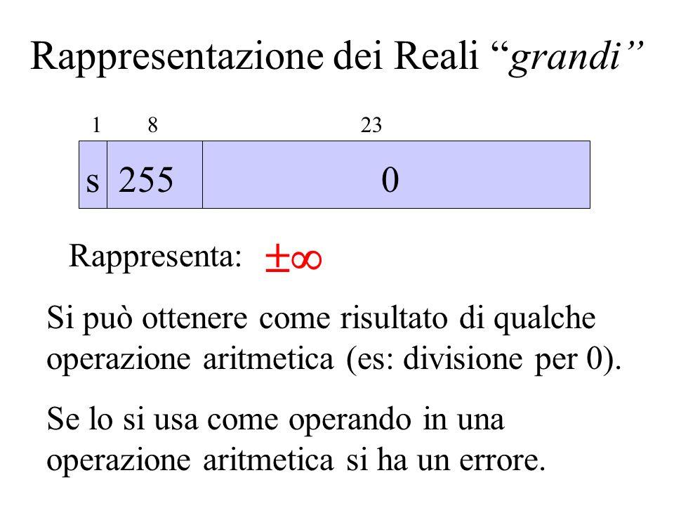 Rappresentazione dei Reali grandi 1 8 23 s 255 0 Rappresenta: Si può ottenere come risultato di qualche operazione aritmetica (es: divisione per 0). S
