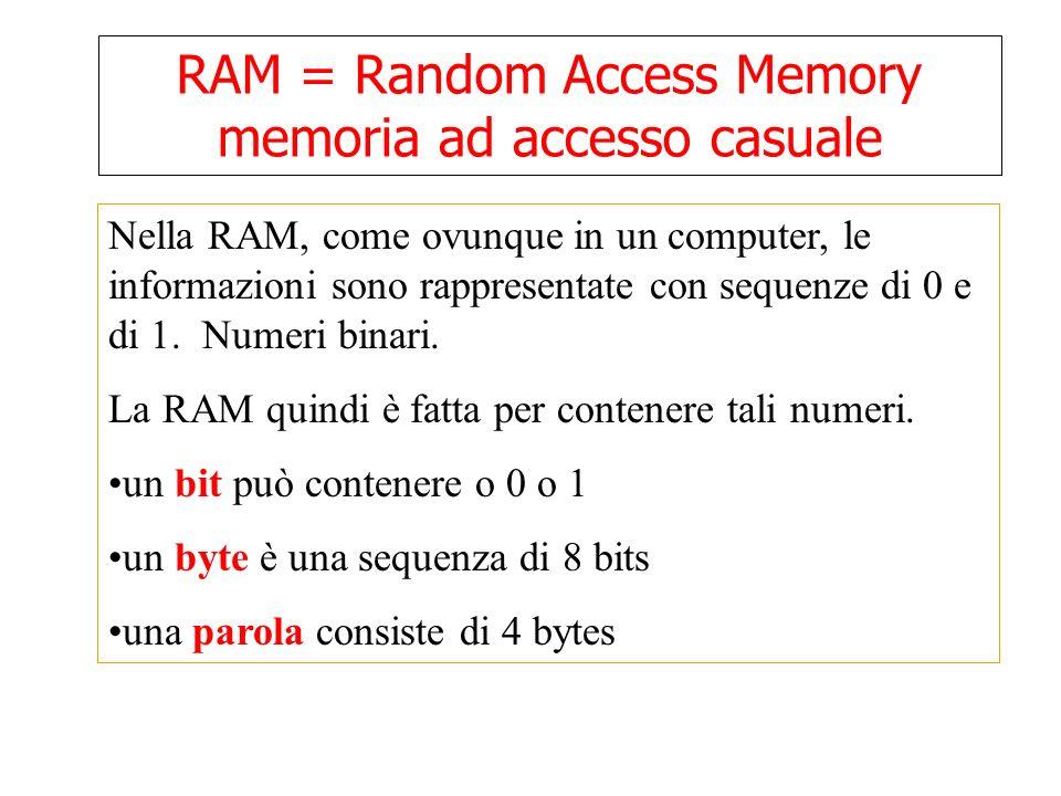 RAM = Random Access Memory memoria ad accesso casuale Nella RAM, come ovunque in un computer, le informazioni sono rappresentate con sequenze di 0 e di 1.