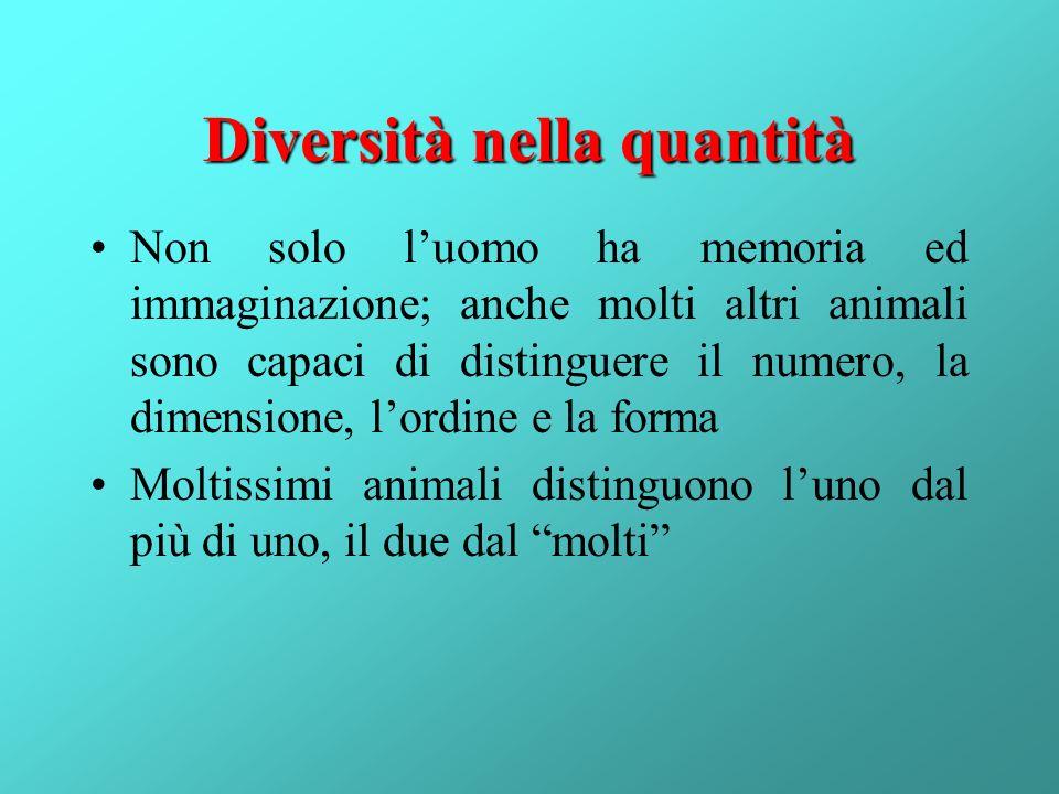 Diversità nella quantità Non solo luomo ha memoria ed immaginazione; anche molti altri animali sono capaci di distinguere il numero, la dimensione, lo