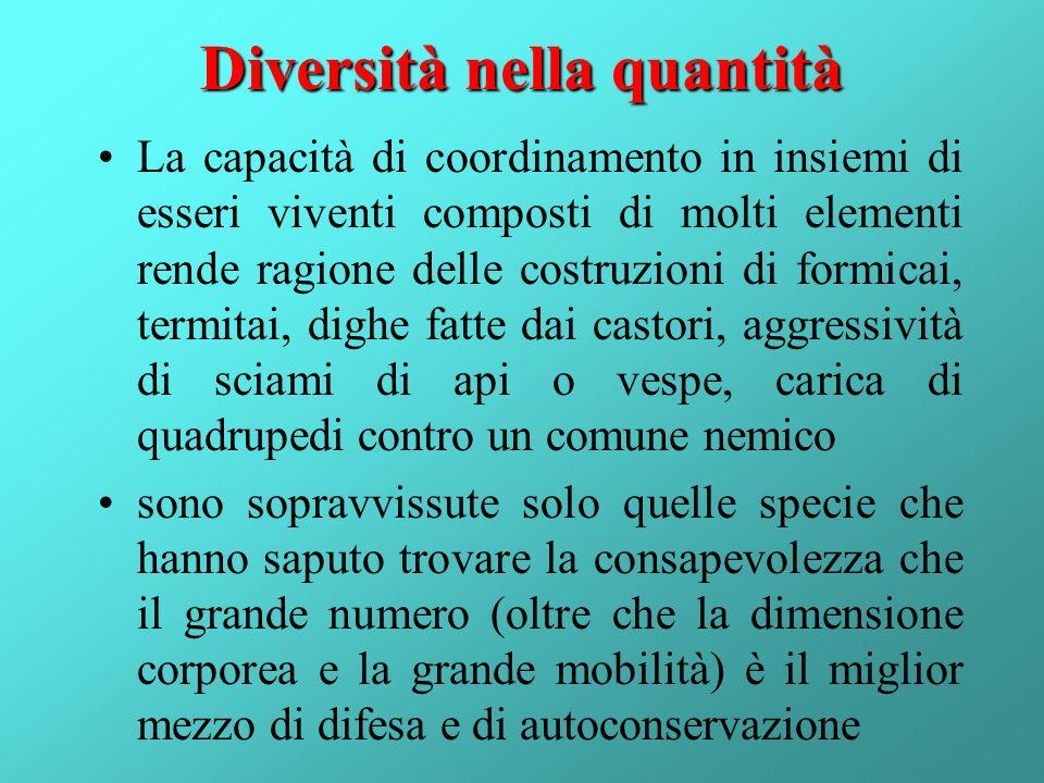 Diversità nella quantità La capacità di coordinamento in insiemi di esseri viventi composti di molti elementi rende ragione delle costruzioni di formi