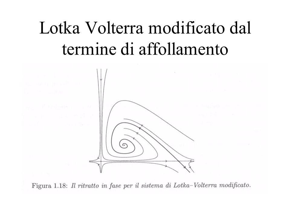 Lotka Volterra modificato dal termine di affollamento