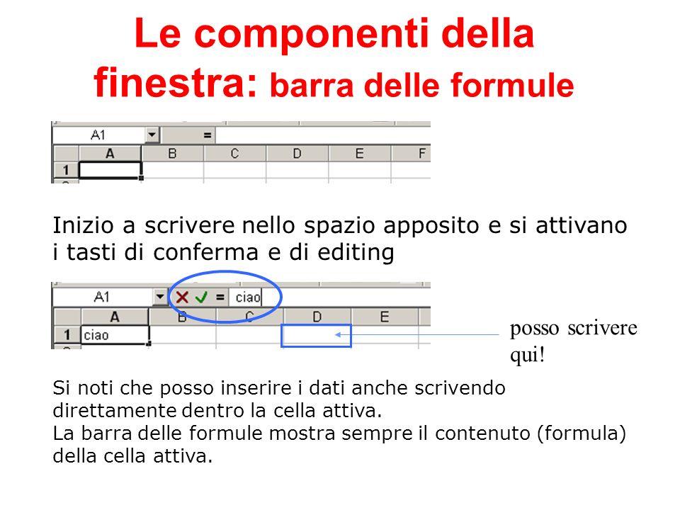 Le componenti della finestra: barra delle formule Inizio a scrivere nello spazio apposito e si attivano i tasti di conferma e di editing posso scriver