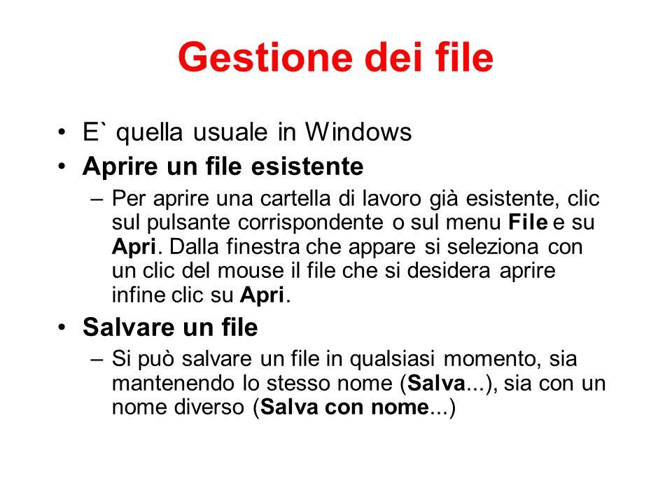 Gestione dei file E` quella usuale in Windows Aprire un file esistente –Per aprire una cartella di lavoro già esistente, clic sul pulsante corrisponde