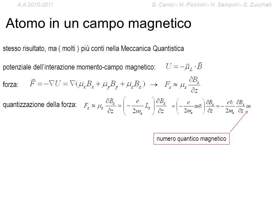 Atomo in un campo magnetico stesso risultato, ma ( molti ) più conti nella Meccanica Quantistica potenziale dellinterazione momento-campo magnetico: f