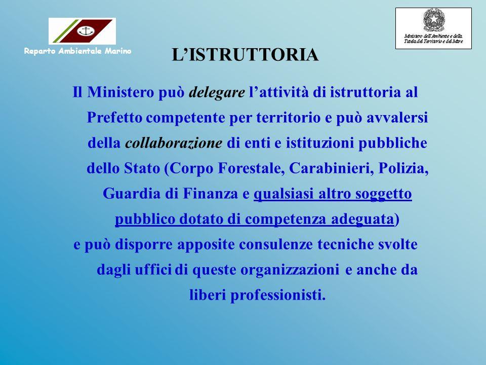 LISTRUTTORIA Il Ministero può delegare lattività di istruttoria al Prefetto competente per territorio e può avvalersi della collaborazione di enti e i