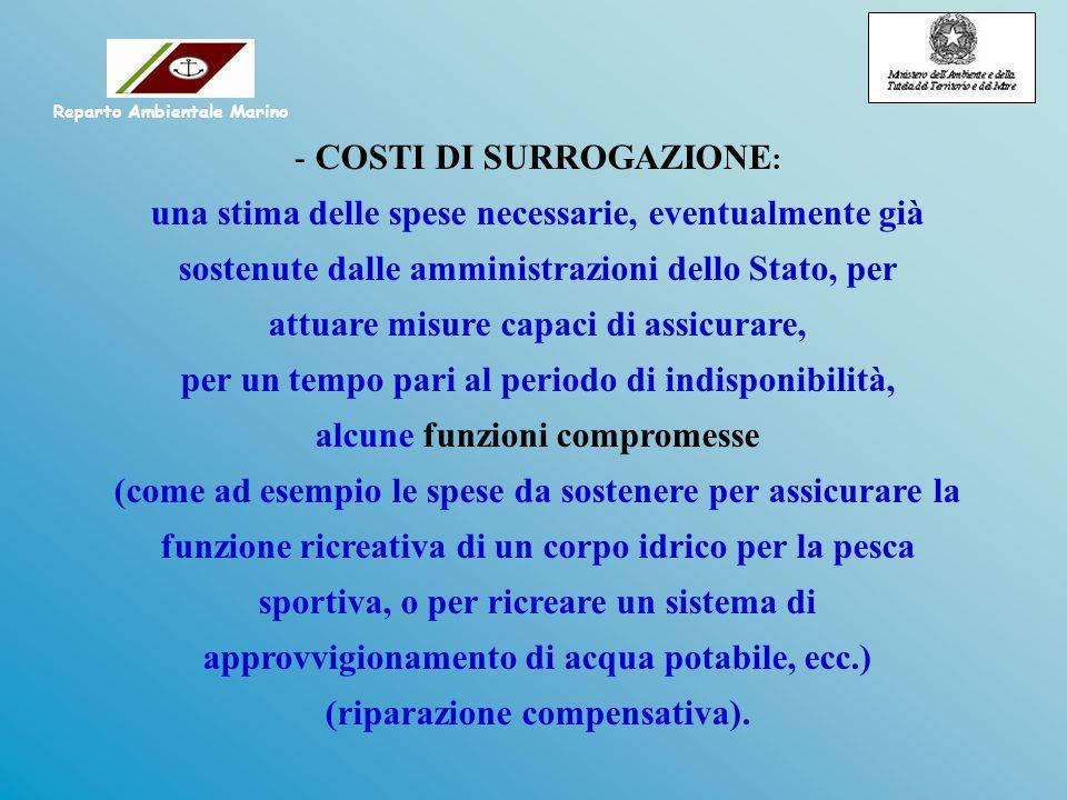 - COSTI DI SURROGAZIONE : una stima delle spese necessarie, eventualmente già sostenute dalle amministrazioni dello Stato, per attuare misure capaci d