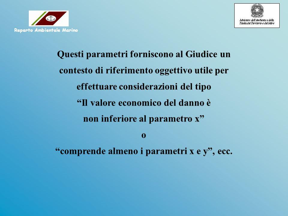 Questi parametri forniscono al Giudice un contesto di riferimento oggettivo utile per effettuare considerazioni del tipo Il valore economico del danno è non inferiore al parametro x o comprende almeno i parametri x e y, ecc.