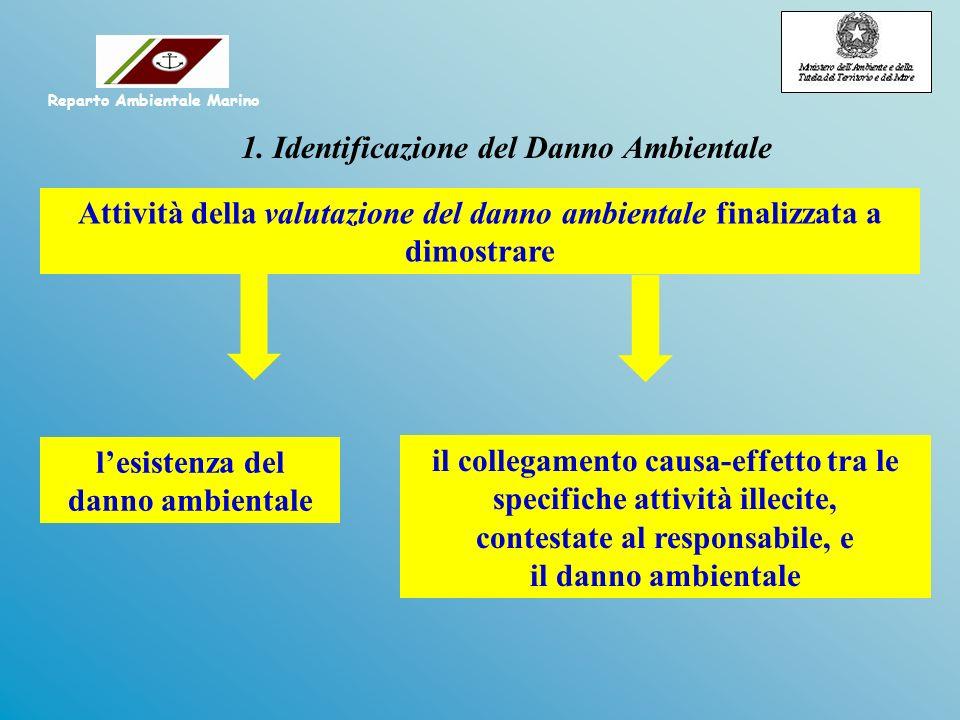 Attività della valutazione del danno ambientale finalizzata a dimostrare il collegamento causa-effetto tra le specifiche attività illecite, contestate