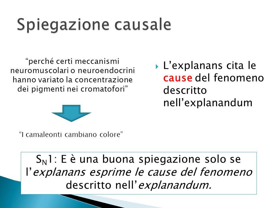 Lexplanans cita le cause del fenomeno descritto nellexplanandum I camaleonti cambiano colore S N 1: E è una buona spiegazione solo se lexplanans espri