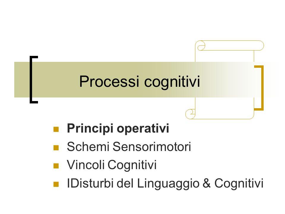 Processi cognitivi Principi operativi Schemi Sensorimotori Vincoli Cognitivi IDisturbi del Linguaggio & Cognitivi