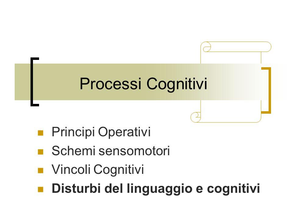 Processi Cognitivi Principi Operativi Schemi sensomotori Vincoli Cognitivi Disturbi del linguaggio e cognitivi