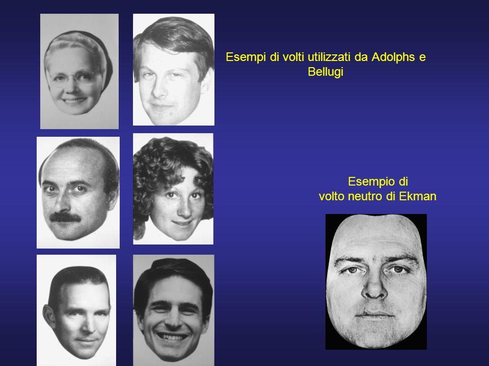 Esempi di volti utilizzati da Adolphs e Bellugi Esempio di volto neutro di Ekman