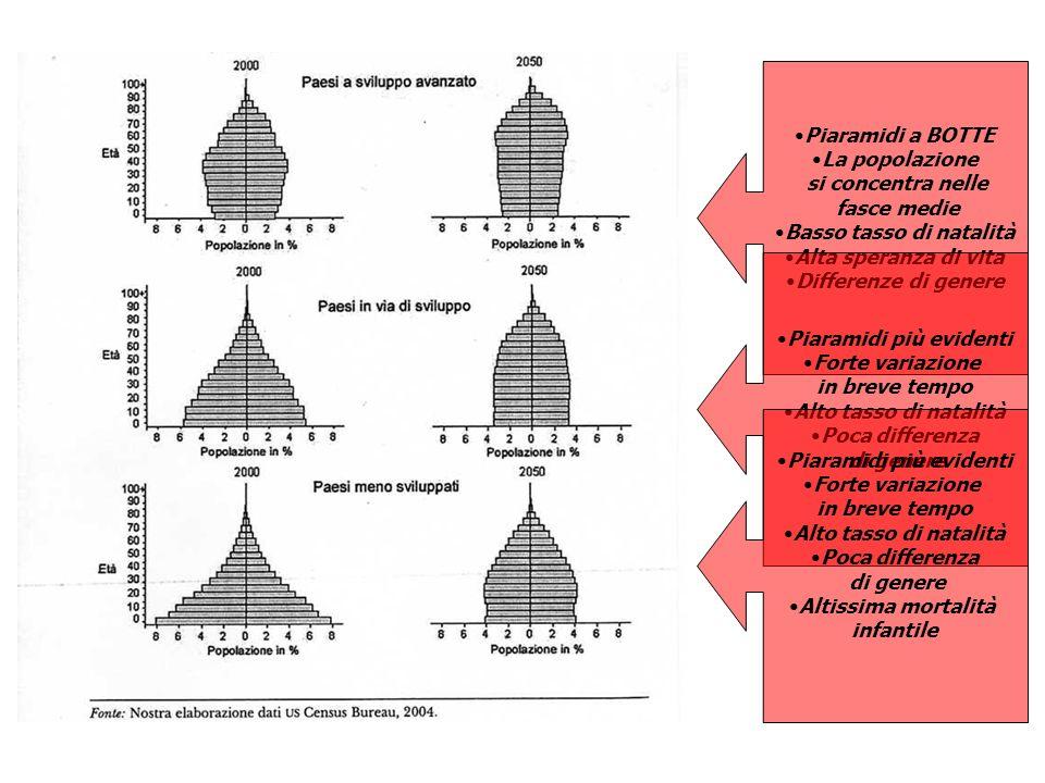 Piaramidi a BOTTE La popolazione si concentra nelle fasce medie Basso tasso di natalità Alta speranza di vita Differenze di genere Piaramidi più evide