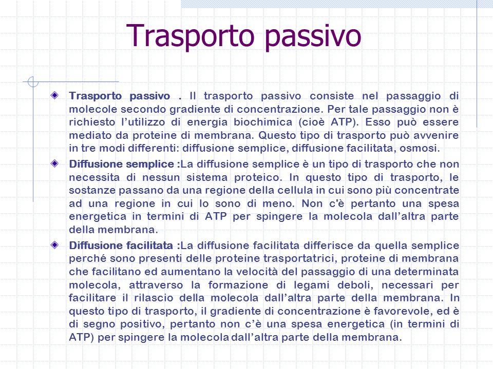 Trasporto passivo Trasporto passivo. Il trasporto passivo consiste nel passaggio di molecole secondo gradiente di concentrazione. Per tale passaggio n