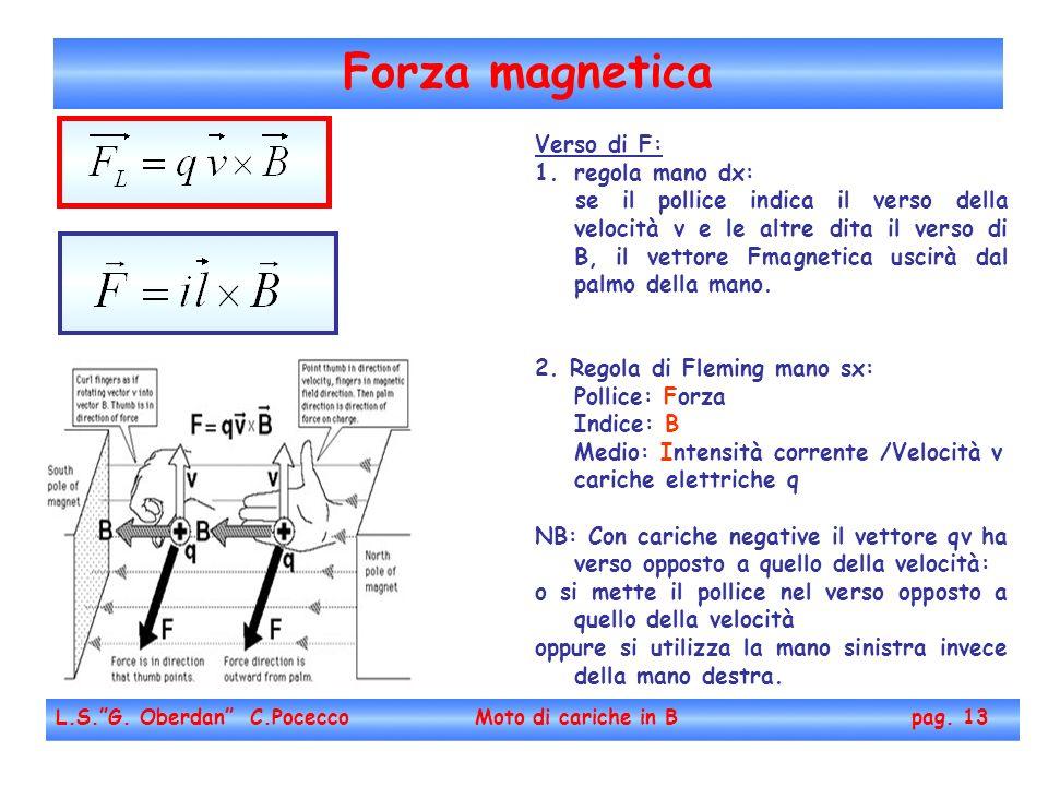 Forza magnetica L.S.G. Oberdan C.Pocecco Moto di cariche in B pag. 13 Verso di F: 1.regola mano dx: se il pollice indica il verso della velocità v e l