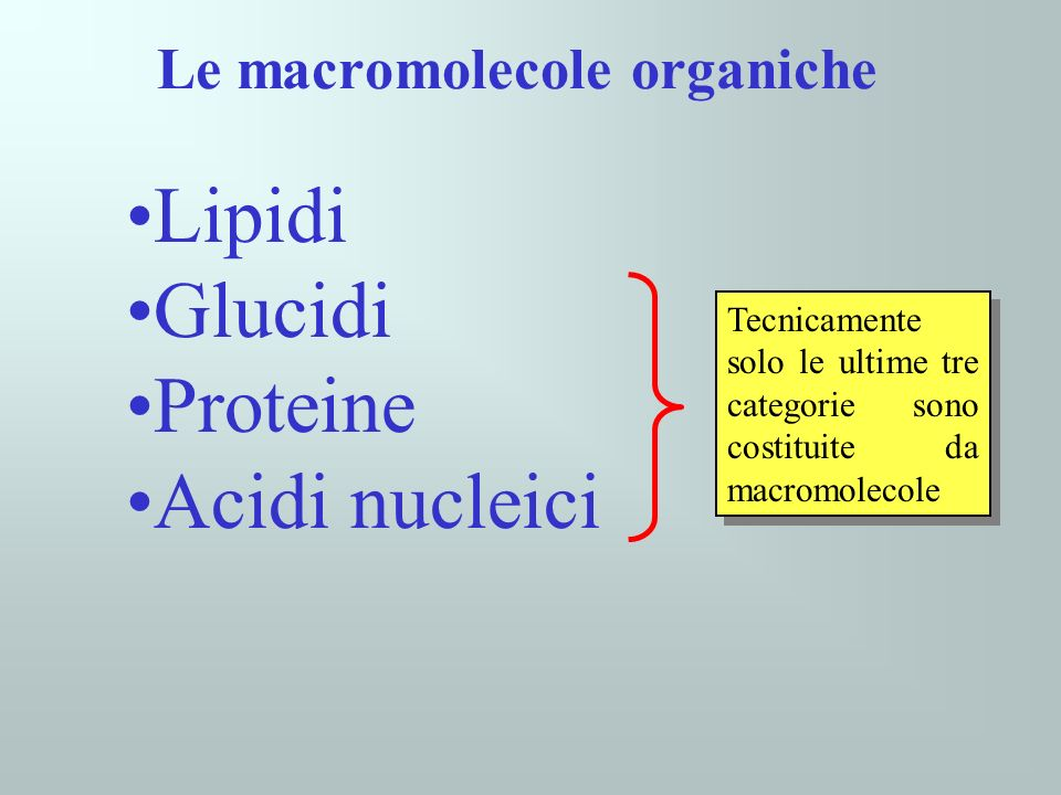 Le macromolecole, assieme, costituiscono la maggior parte del contenuto secco degli organismi viventi
