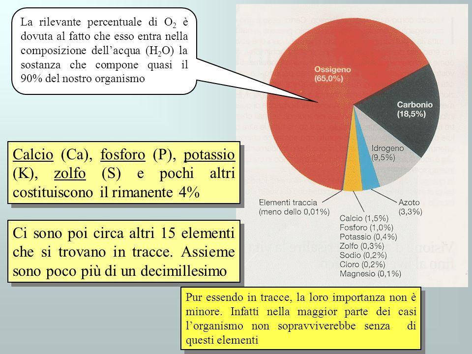 Calcio (Ca), fosforo (P), potassio (K), zolfo (S) e pochi altri costituiscono il rimanente 4% Ci sono poi circa altri 15 elementi che si trovano in tr