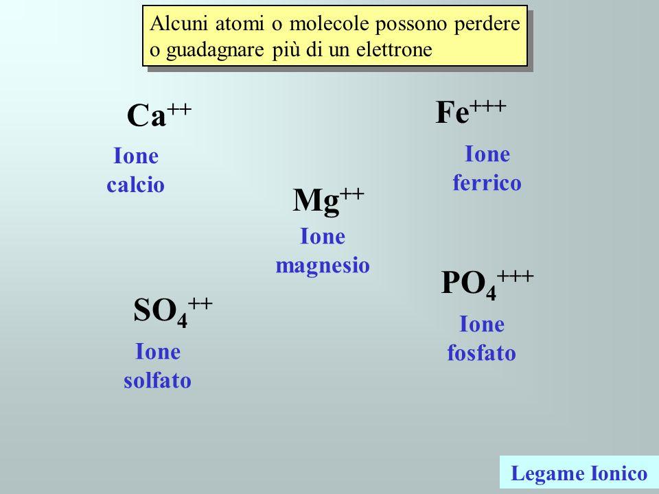 Alcuni atomi o molecole possono perdere o guadagnare più di un elettrone Ca ++ Mg ++ Fe +++ SO 4 ++ PO 4 +++ Legame Ionico Ione solfato Ione fosfato I