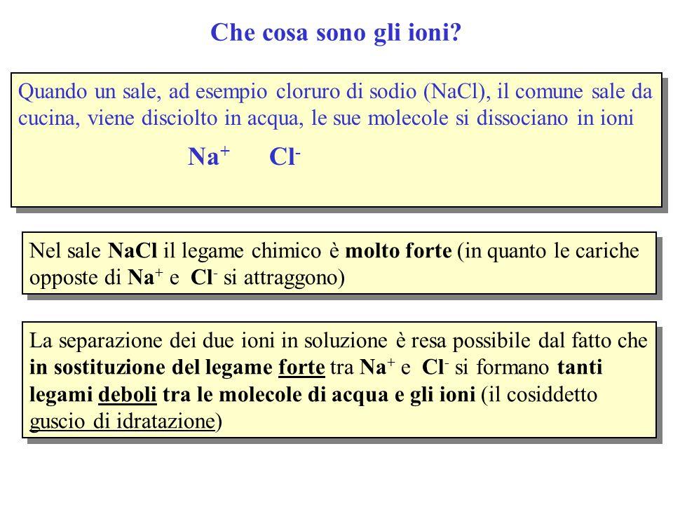Quando un sale, ad esempio cloruro di sodio (NaCl), il comune sale da cucina, viene disciolto in acqua, le sue molecole si dissociano in ioni Na + Cl
