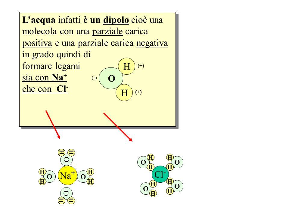 Lacqua infatti è un dipolo cioè una molecola con una parziale carica positiva e una parziale carica negativa in grado quindi di formare legami sia con