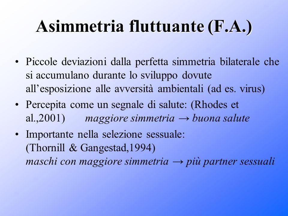 Asimmetria fluttuante (F.A.) Piccole deviazioni dalla perfetta simmetria bilaterale che si accumulano durante lo sviluppo dovute allesposizione alle a
