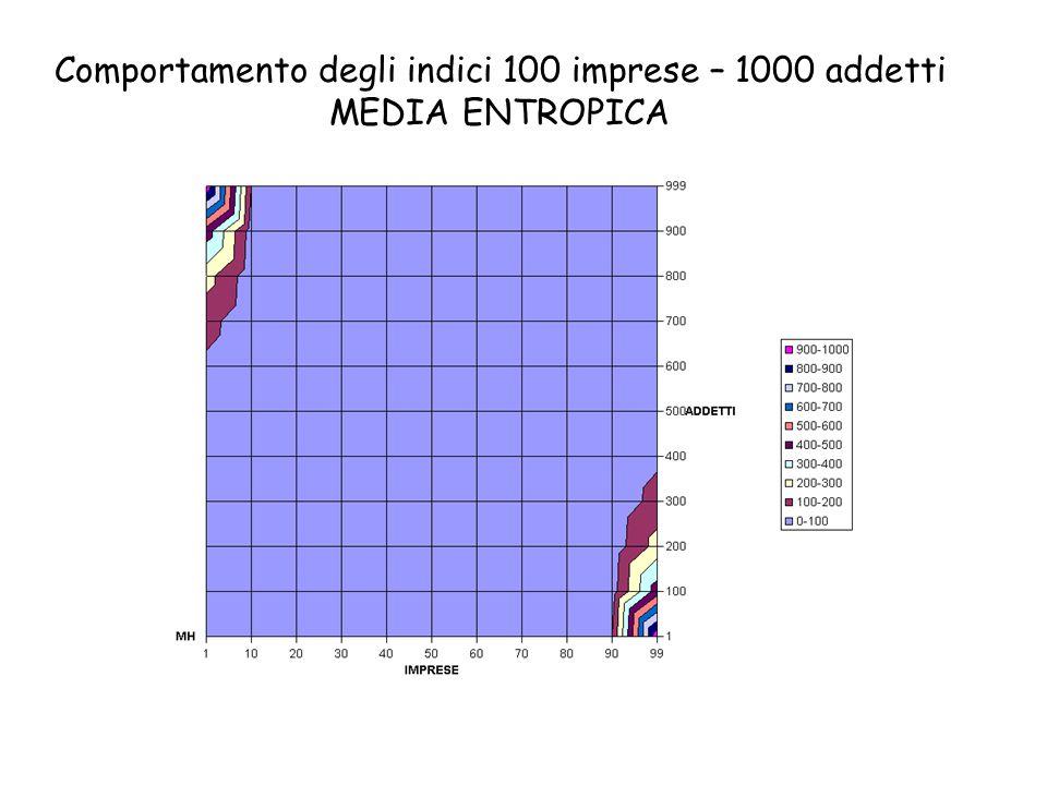 Comportamento degli indici 100 imprese – 1000 addetti MEDIA ENTROPICA