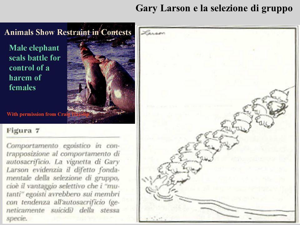 Gary Larson e la selezione di gruppo